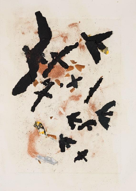Sylvie Loeb - Peintures & Gravures - Oiseaux - 31 - Oiseaux