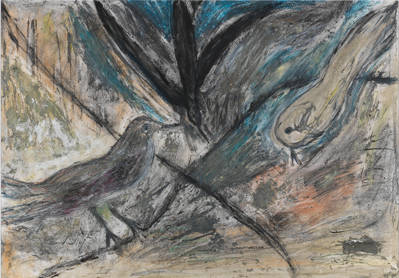 Sylvie Loeb - Peintures & Gravures - Oiseaux - 17 - Oiseaux