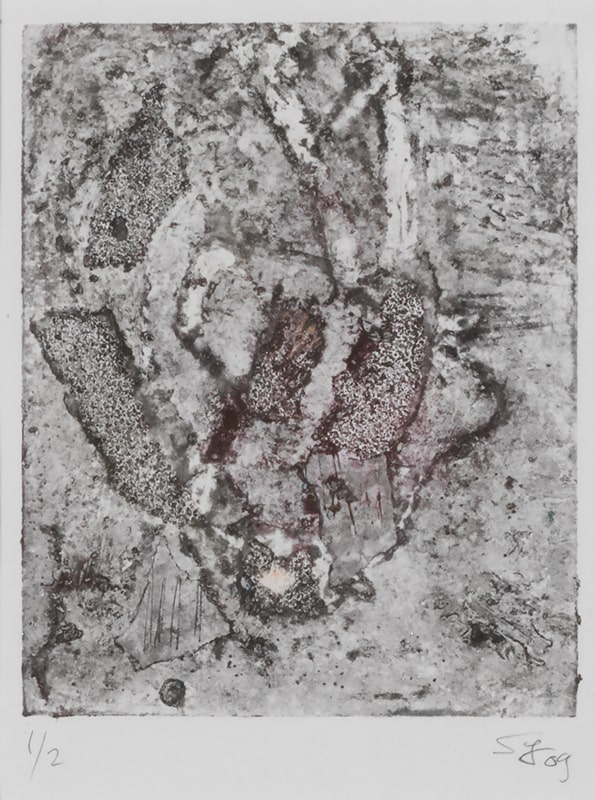 Sylvie Loeb - Peintures & Gravures - Oiseaux - 24 - Oiseaux