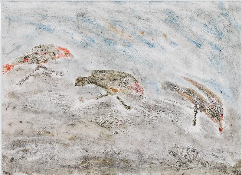 Sylvie Loeb - Peintures & Gravures - Oiseaux - 26 - Oiseaux