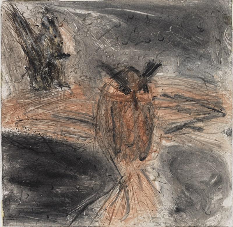 Sylvie Loeb - Peintures & Gravures - Oiseaux - 34 - Oiseaux