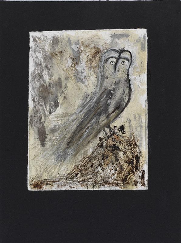 Sylvie Loeb - Peintures & Gravures - Oiseaux - 35 - Oiseaux