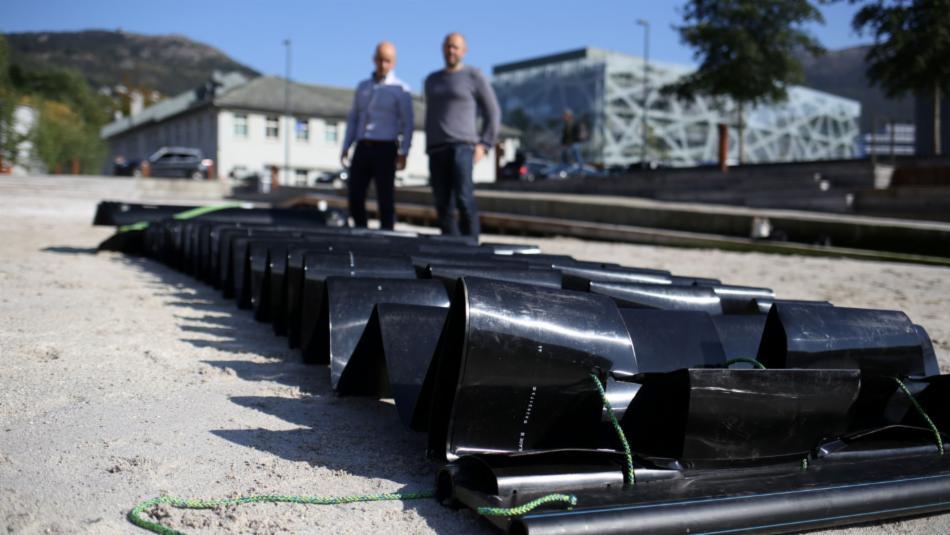 Svart plasthus for rognkjeks
