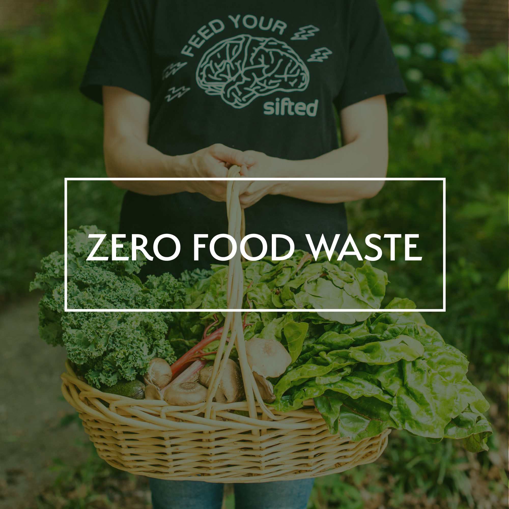 Sifted is making a commitment to Zero Food Waste