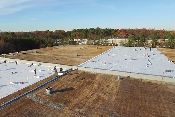 single ply membrane roof system