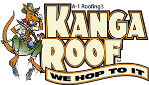 Top-Rated Roof Repair & Replacement in Baltimore, MD | Kanga