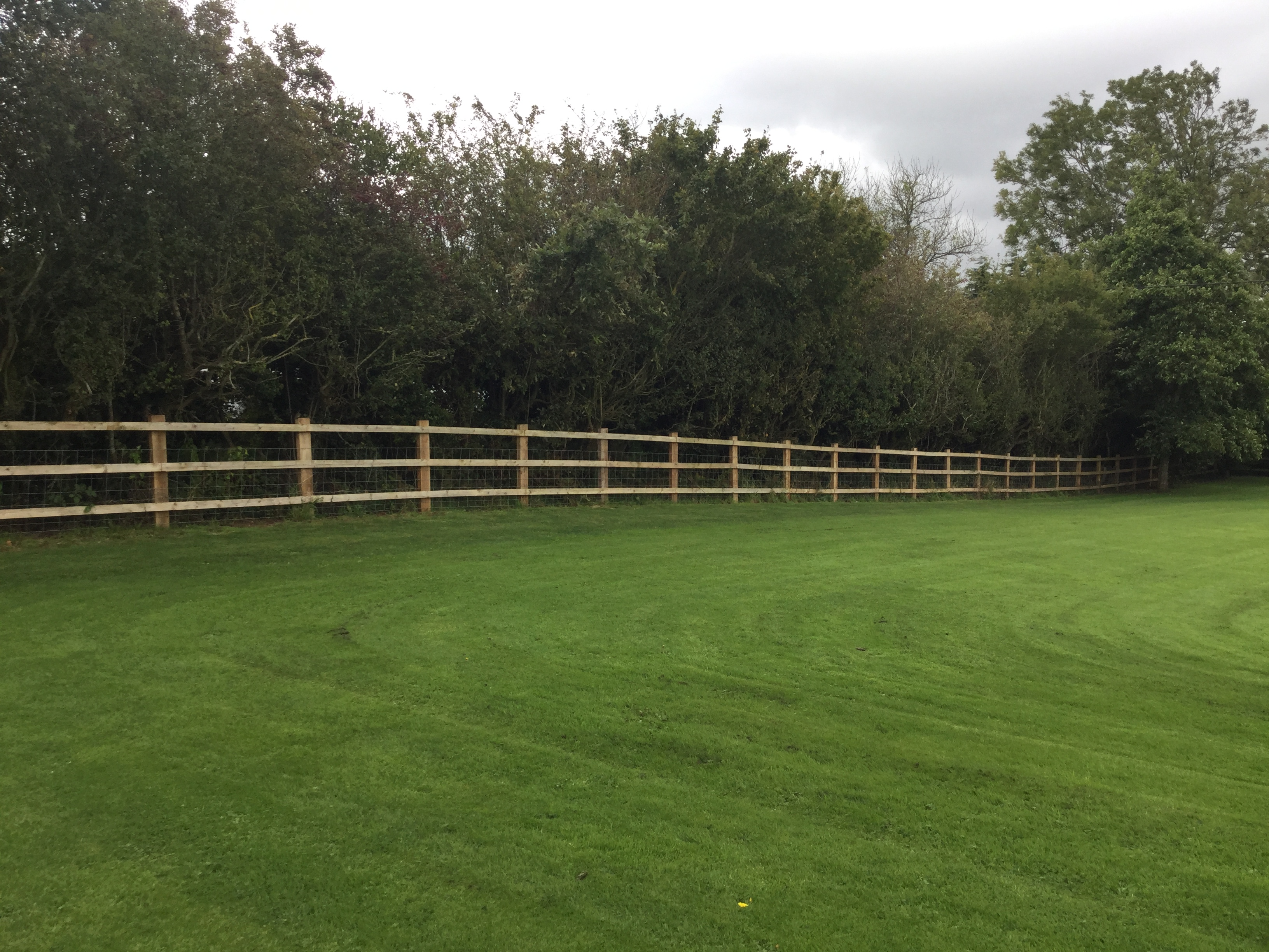 Agricultural Fencing by Bulldog Sheds & Fencing