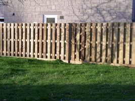 Bulldog Sheds, Domestic Fencing