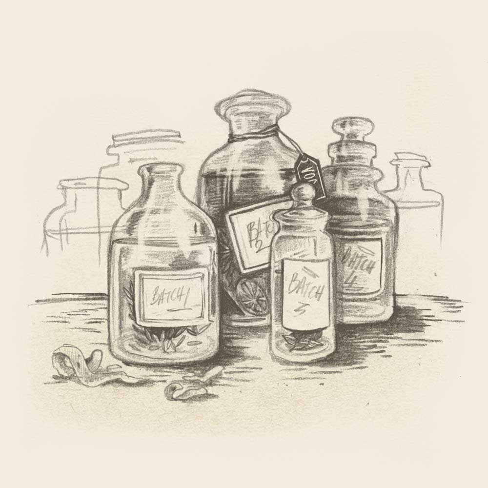Illustration of  the gin botanicals steeping