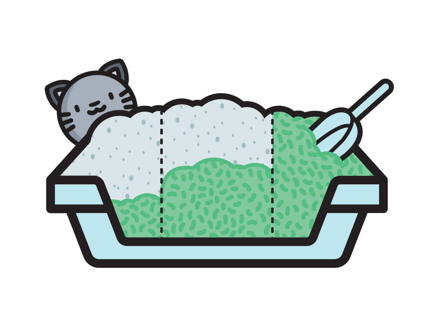 transition your cat to a new litter box