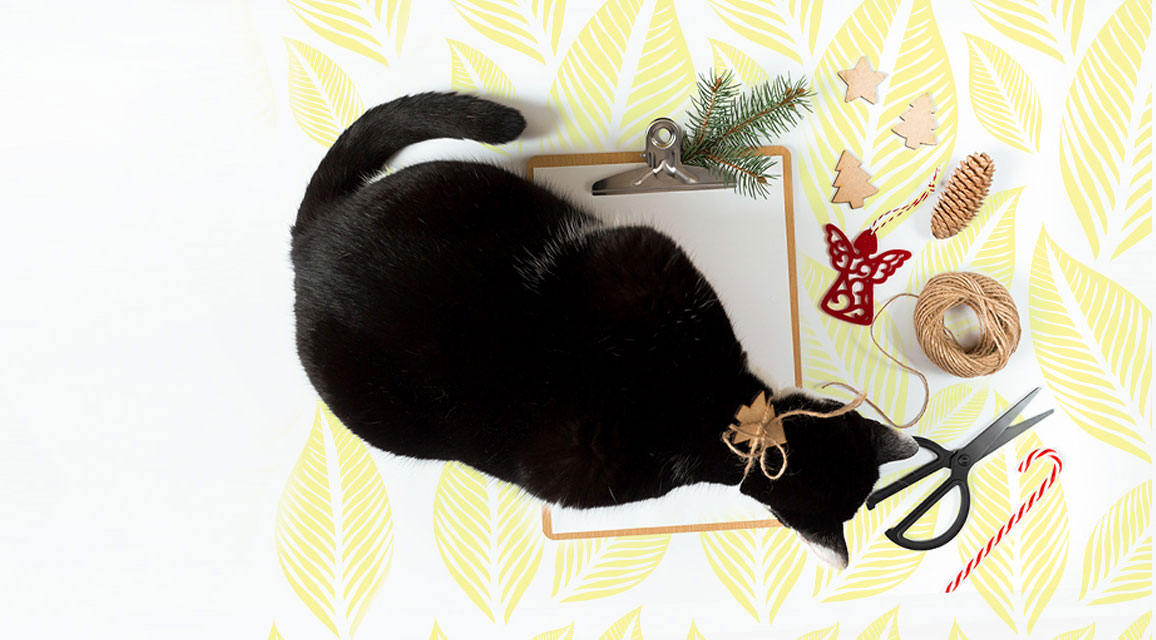 holiday gift ideas, gift ideas for cat people, cat owner gifts, christmas gifts for cat owners