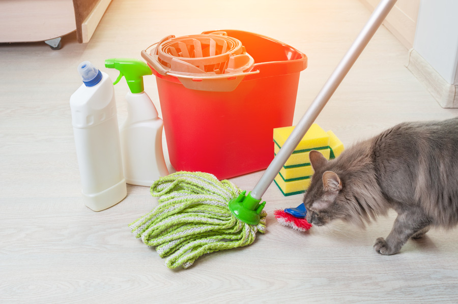 eco-friendly spring cleaning for pets