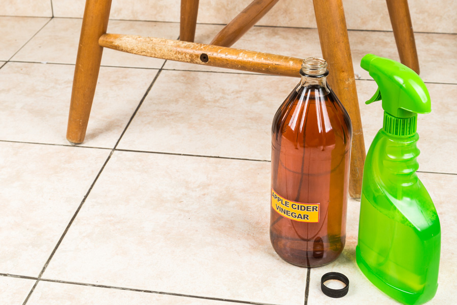 eco-friendly cleaning products for pets