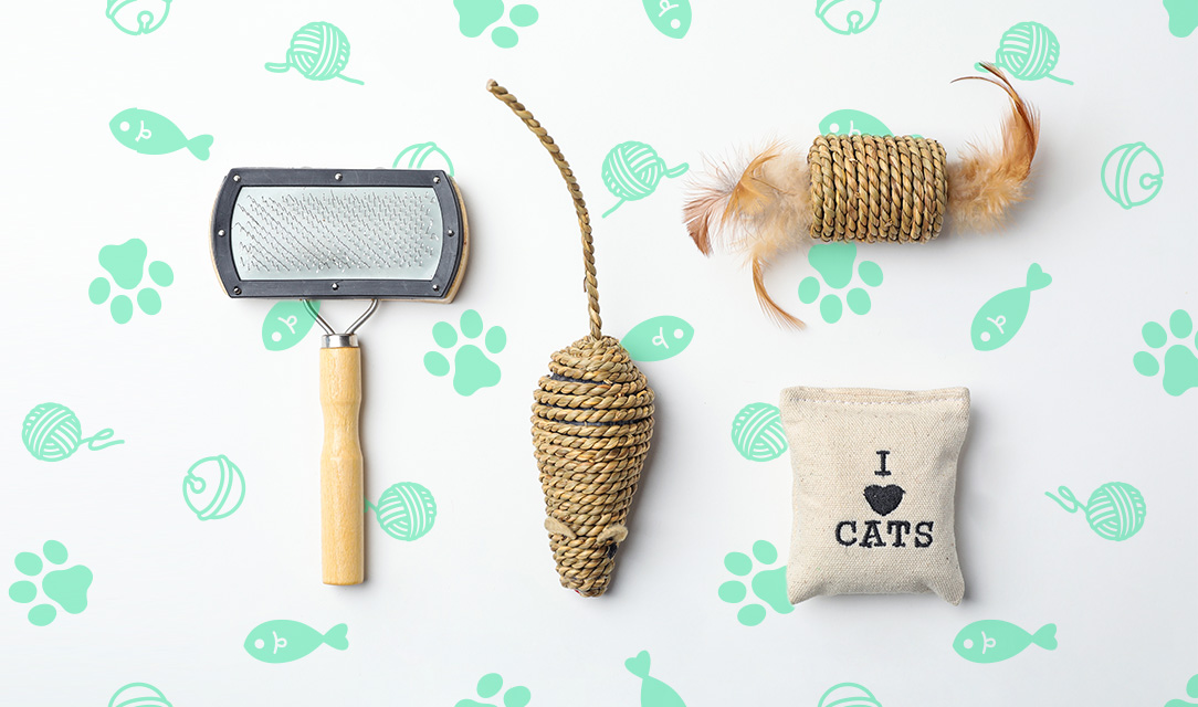 upcycling, recycling used cat items, eco-friendly, recycle used cat items