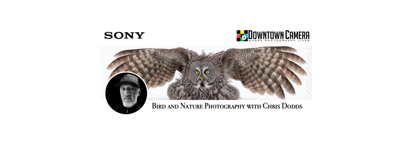 Join world-renowned Canadian nature photographer, blogger, photo educator and lecturer, Christopher Dodds
