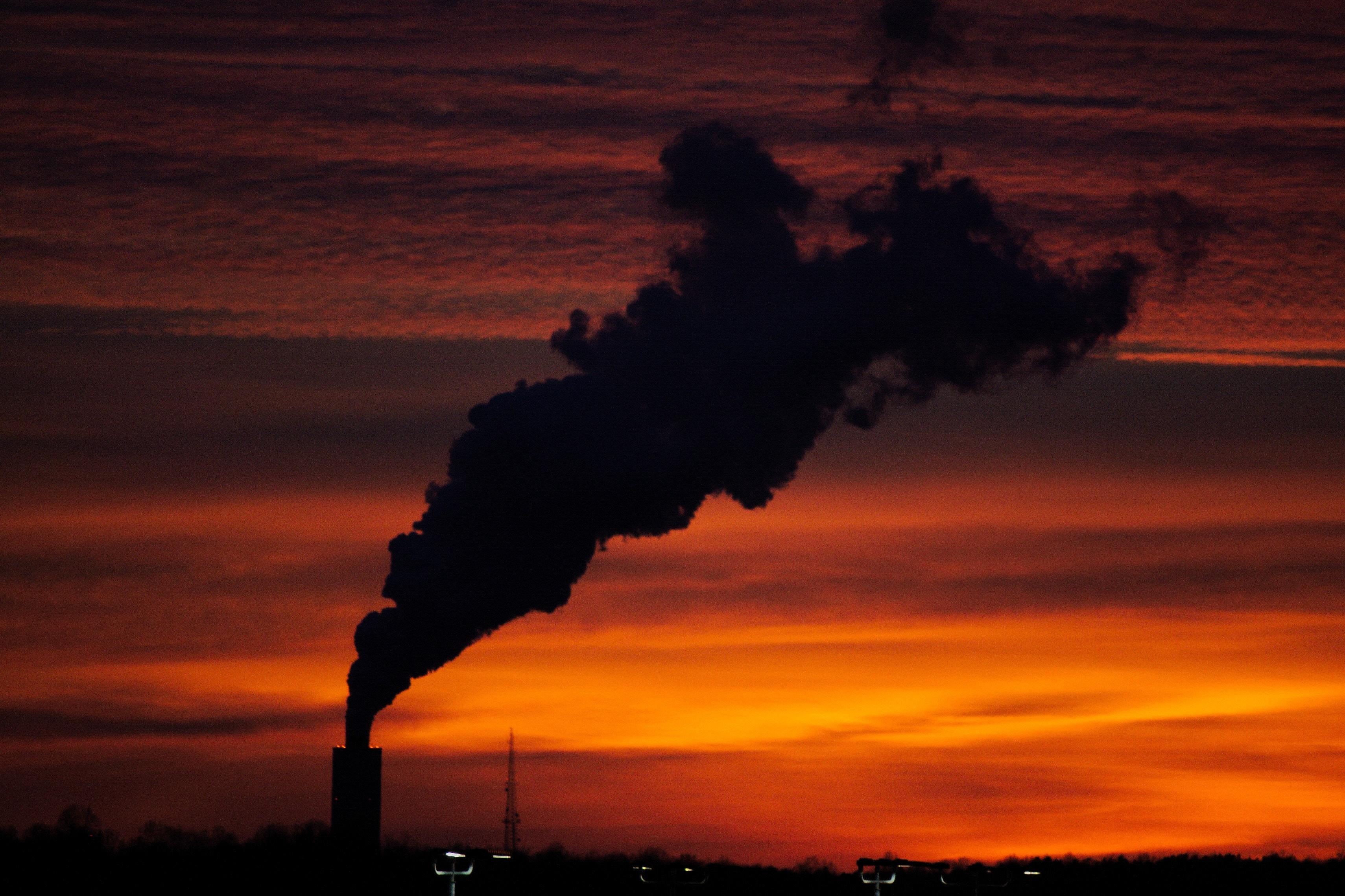 Екологічність сонячних панелей на криші та землі