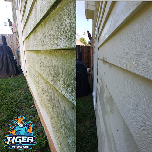 siding cleaning project by tiger pro wash