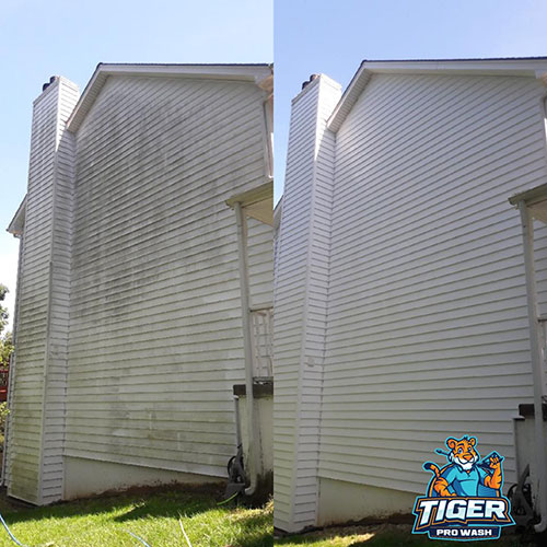tiger pro wash power washing review project