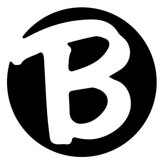 Brady Trucking logo