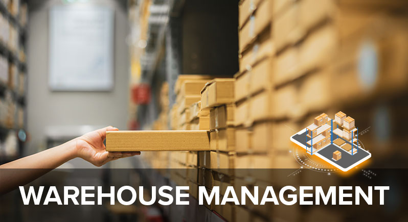 What Is Warehouse Management? A Definition and Best Practices