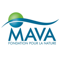 Mava Foundation Logo