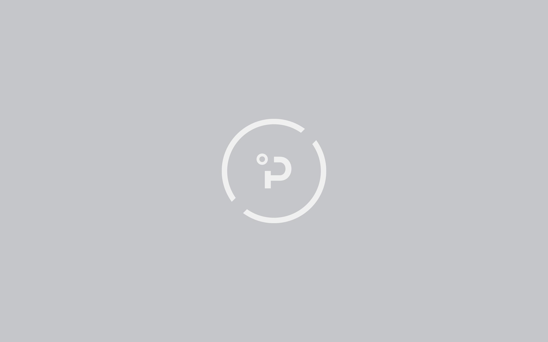Plaato logo icon