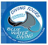blue water diving logo
