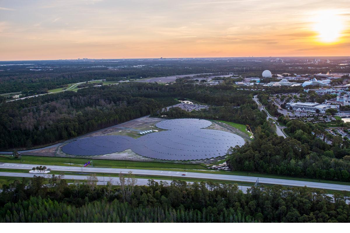 Disney Solar Farm