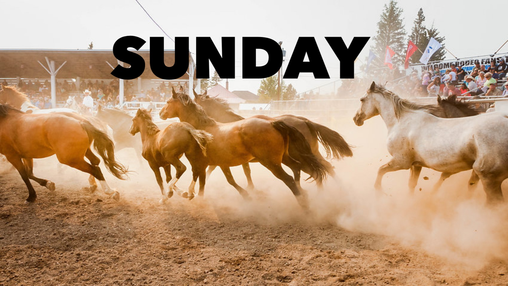 SUNDAY - Meagher County Labor Day Rodeo 2021