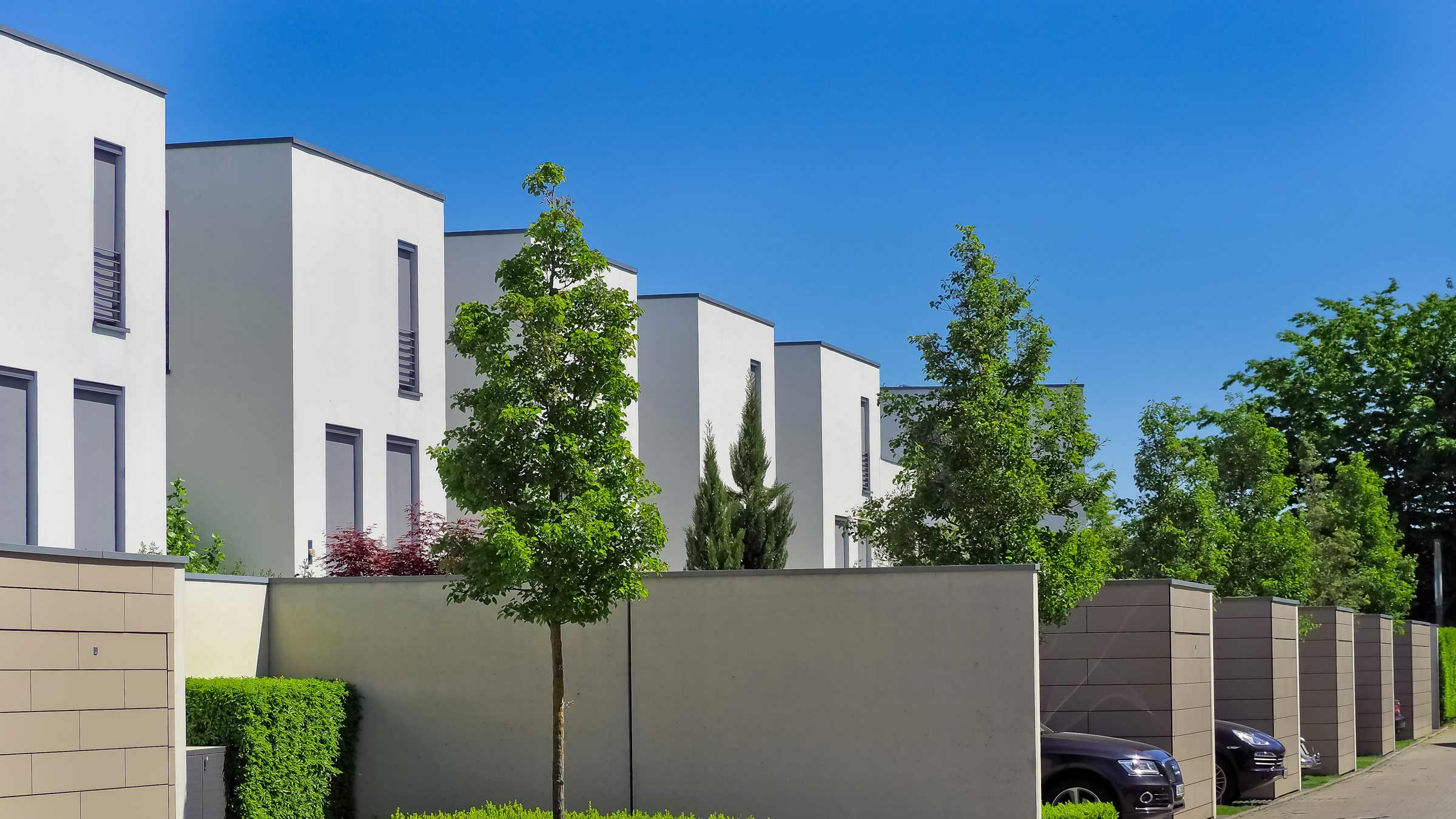 Tree services in Design and Construction