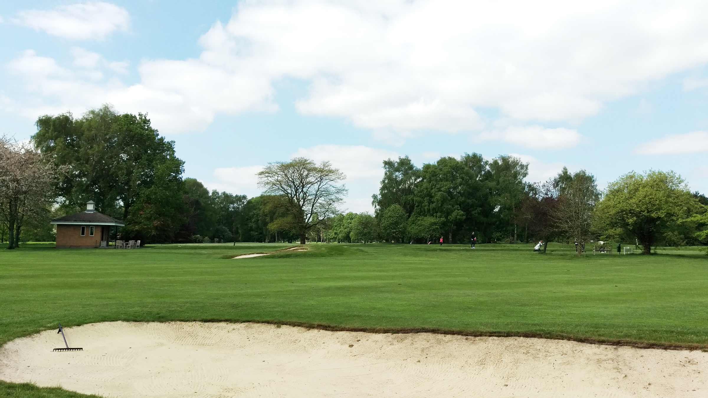 Woodland Management on Golf Courses