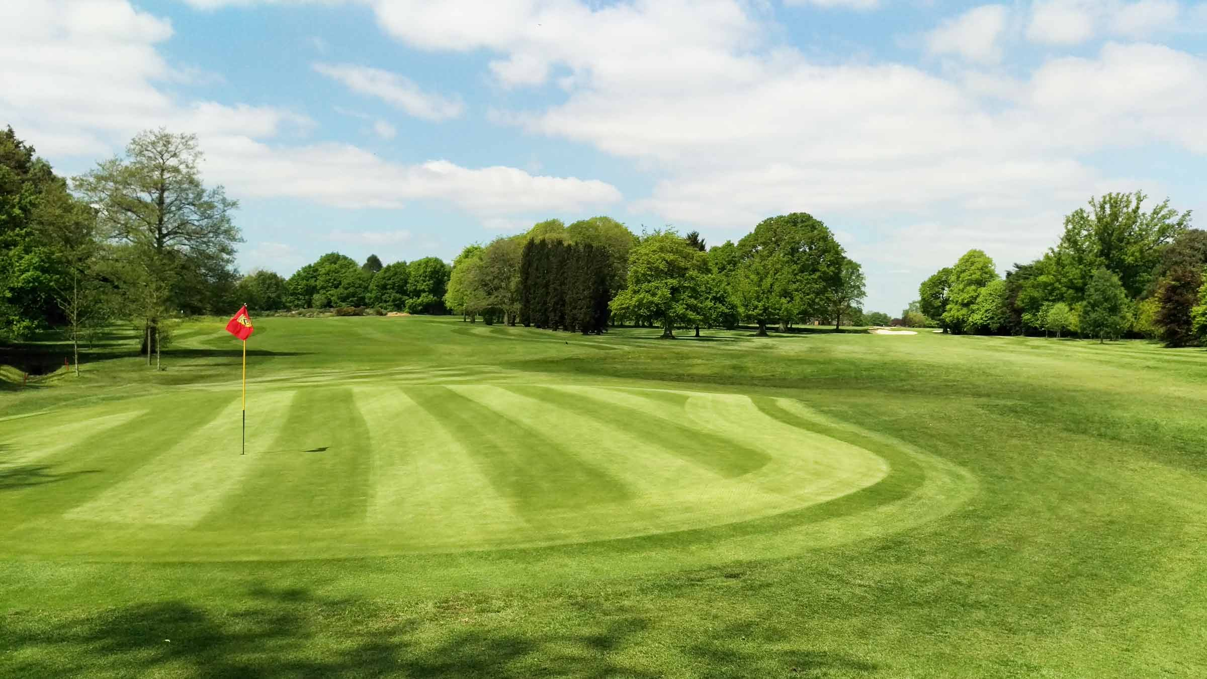 Tree management on Golf Courses