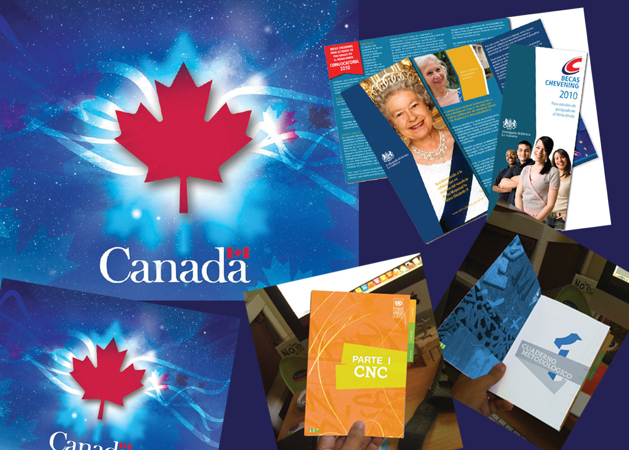 Canada Embassy in Havana Logo