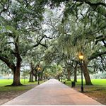 If we have to social distance, what better way than a stroll through Forsyth Park. 📸@kristabedosky