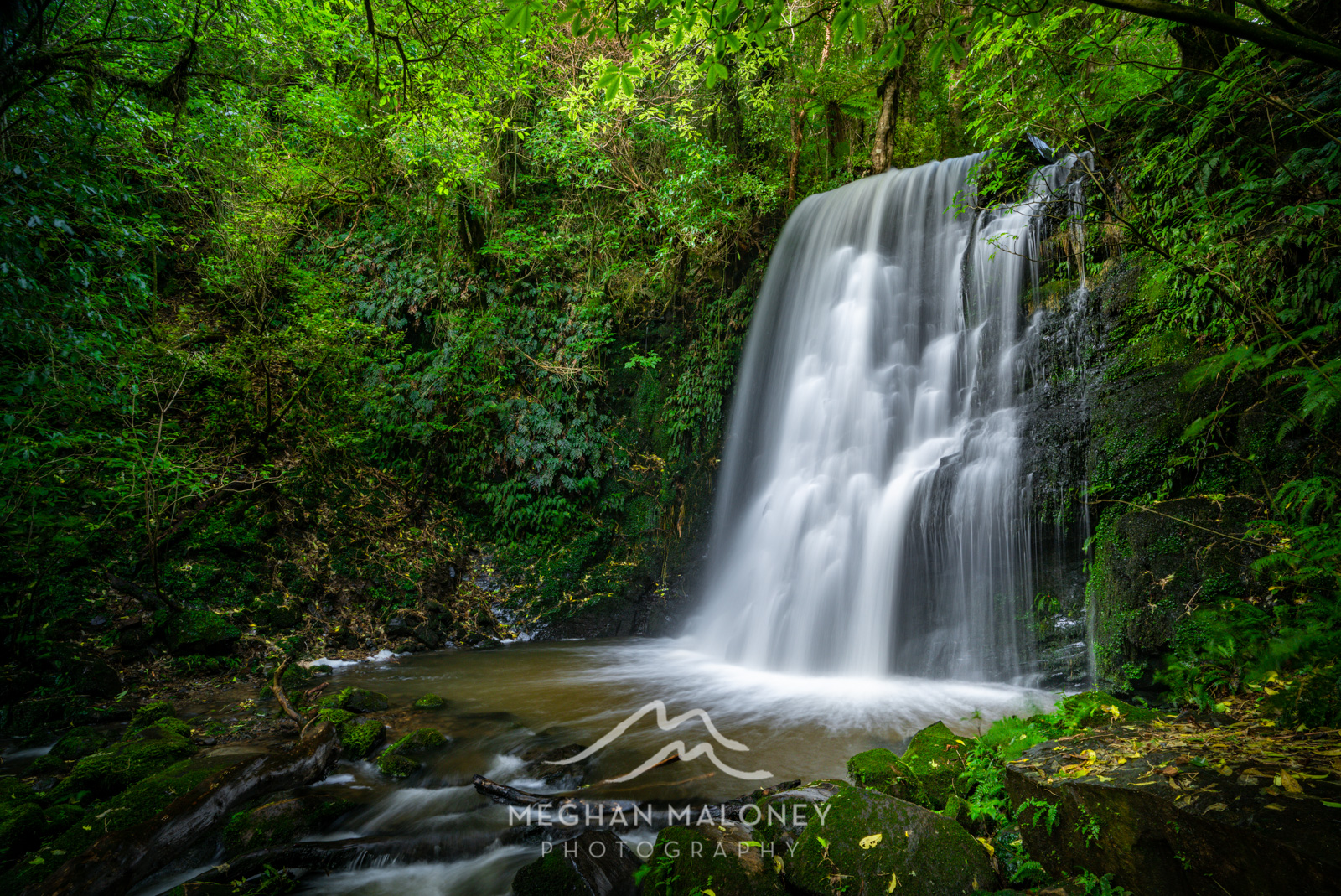 Catlins & Dunedin Landscape Photography