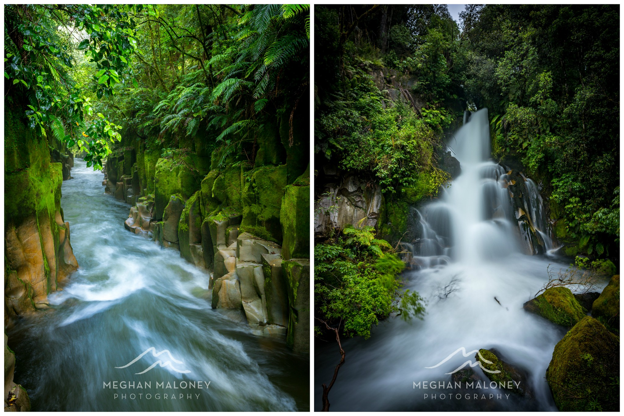 Whirinaki Forest canyon waterfall