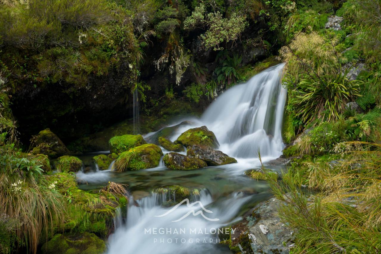 Turtle Falls Routeburn Track Fiordland