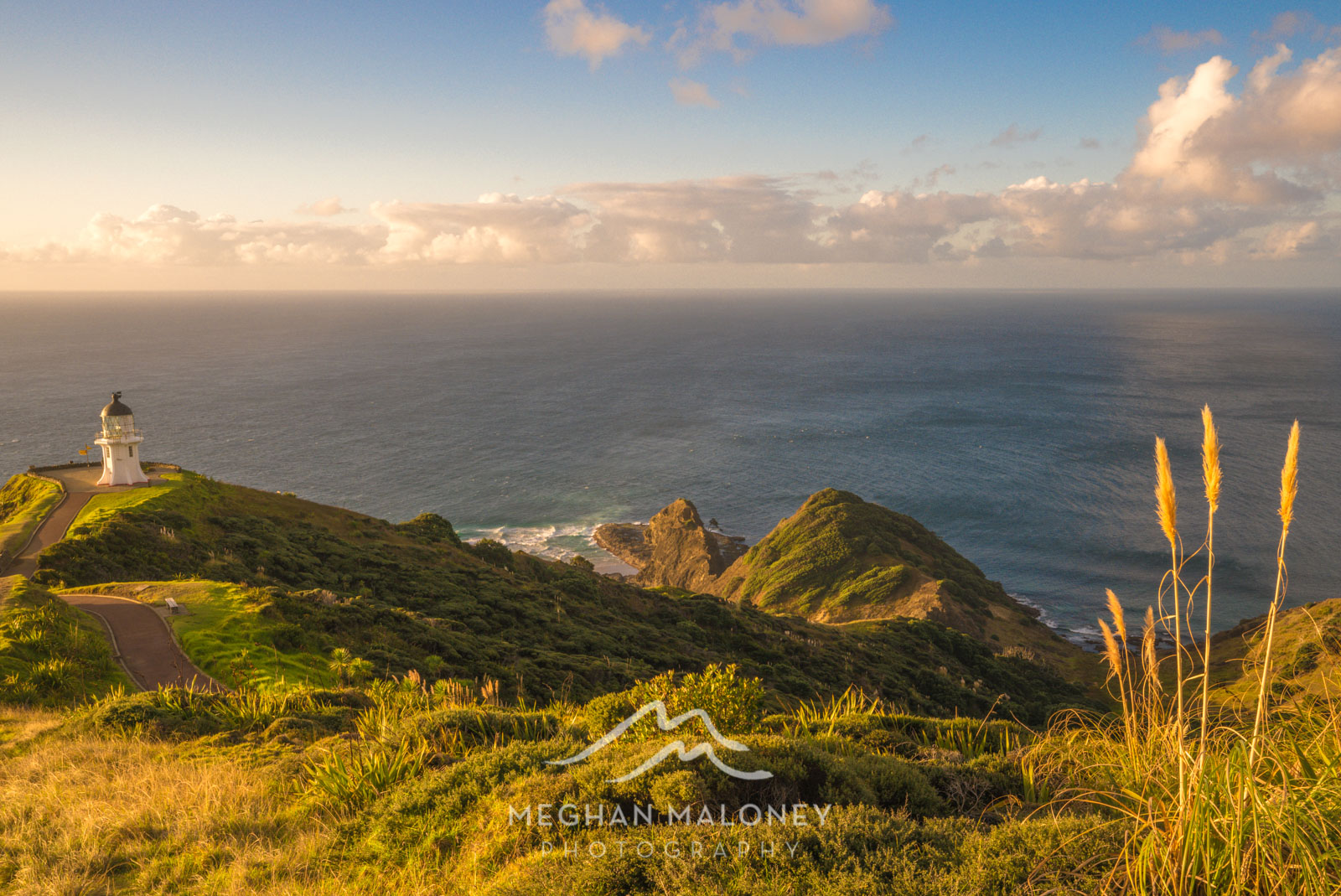 Cape Reinga Golden Sunset