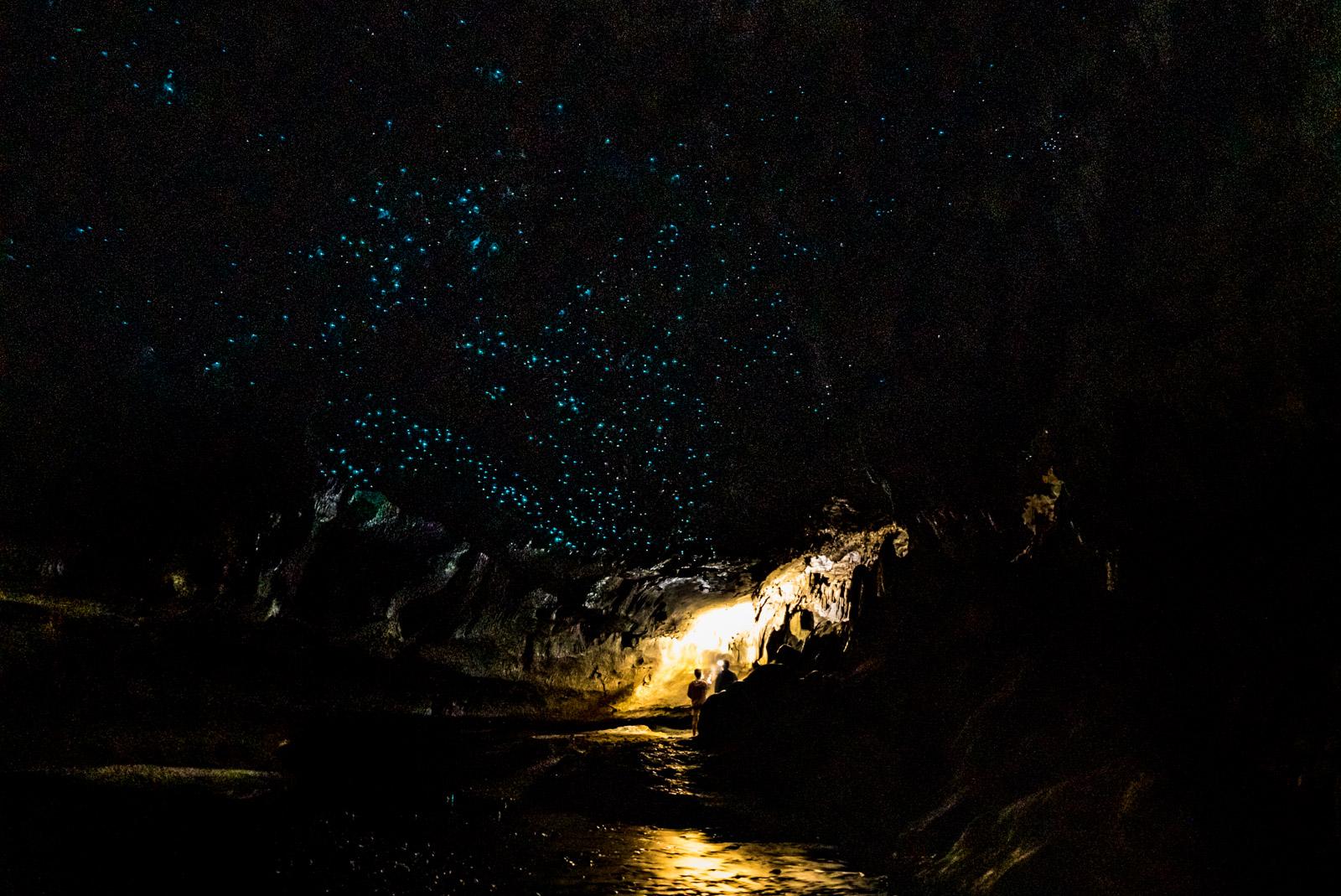 Waipu Glow Worm  Caves