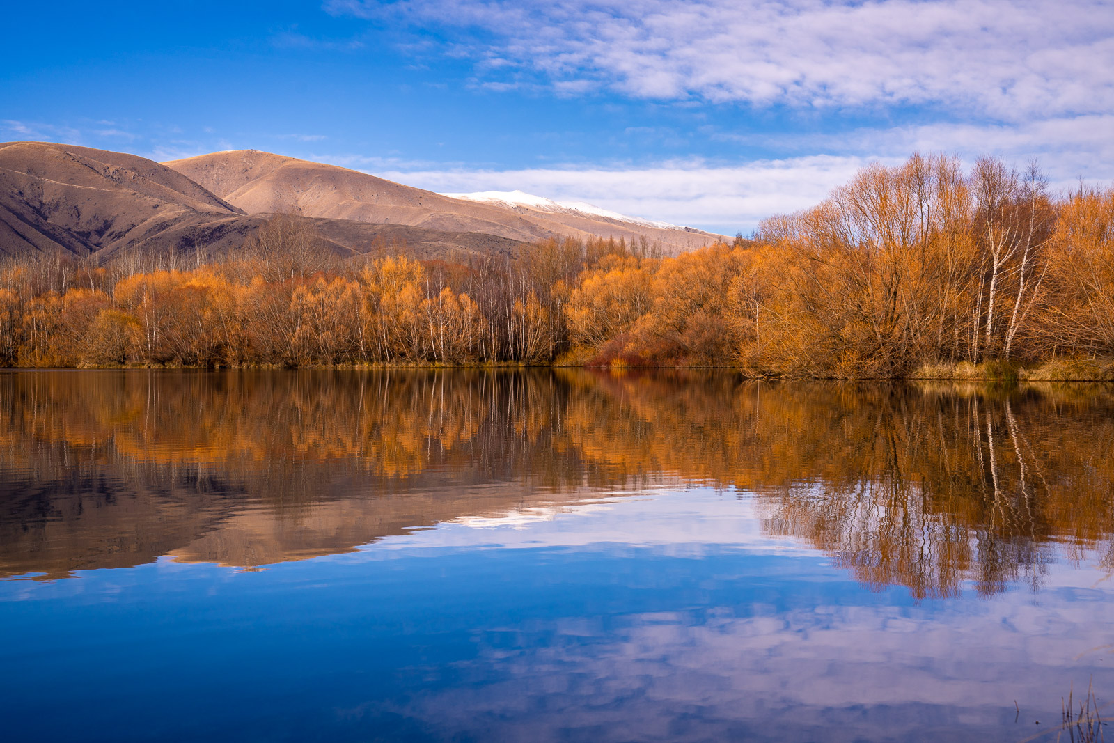 Twizel Wairepo Arm Blue Gold Winter Reflections