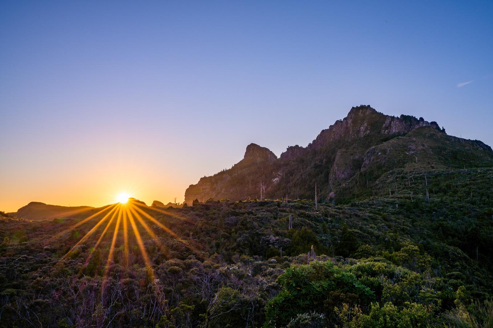 Sunrise at The Pinnacles Coromandel