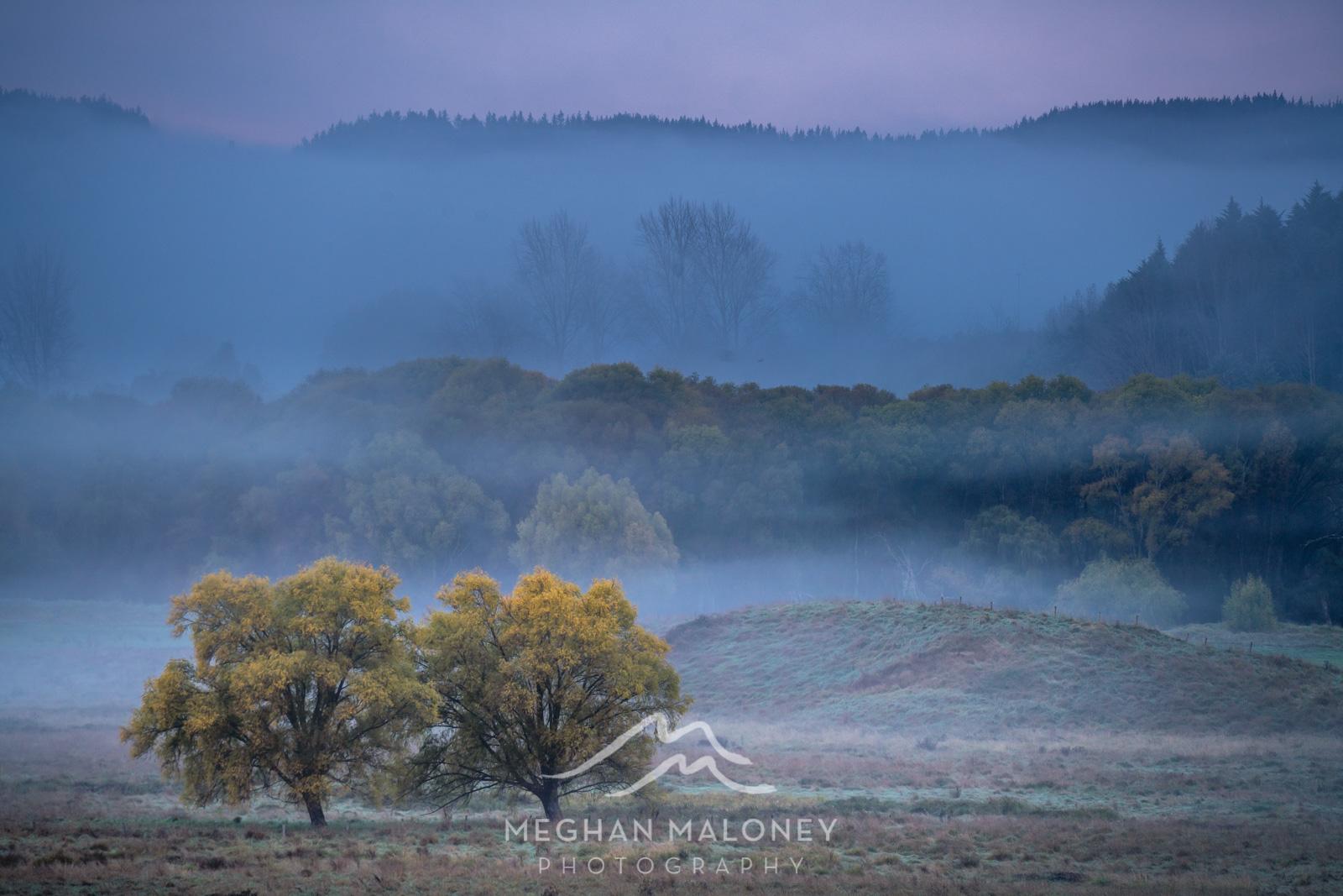 foggy-field-sunrise-hawkes-bay