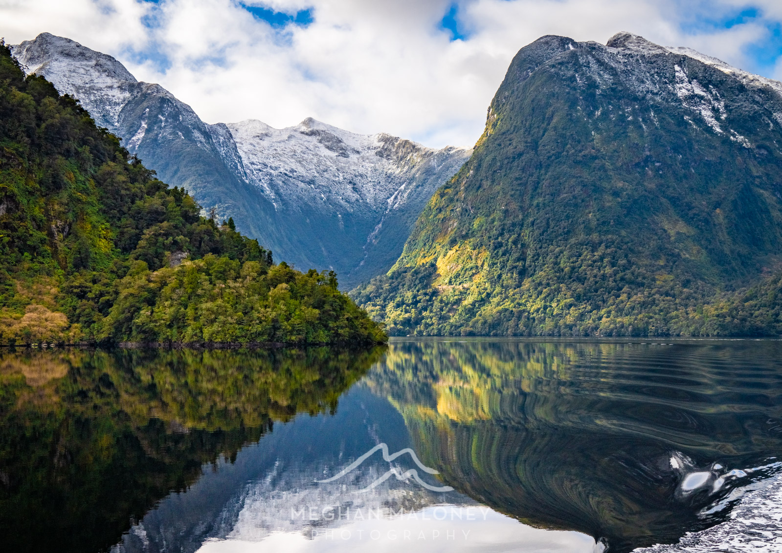 Doubtful Sound Crooked Arm Reflections