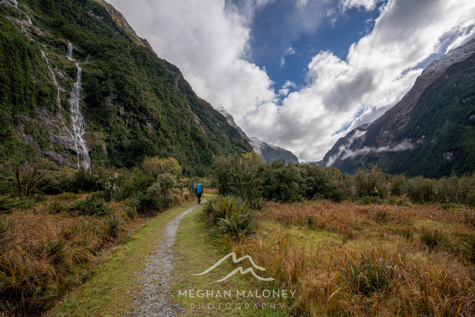 clinton valley milford track