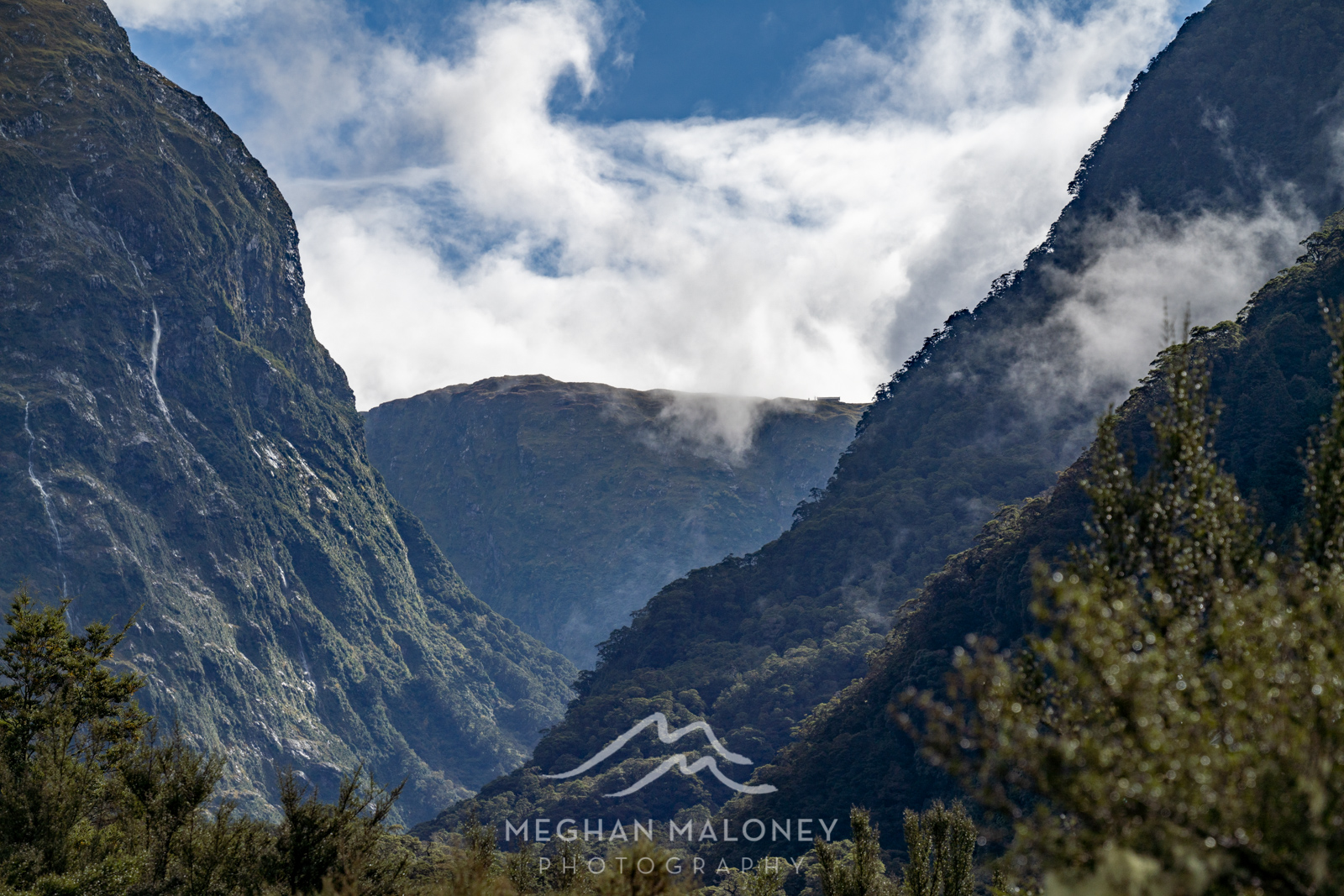 mackinnon pass view clinton valley milford track