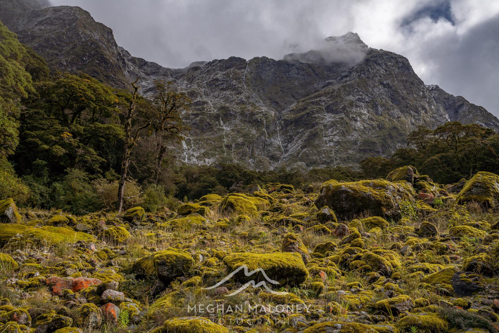 clinton valley peaks milford track