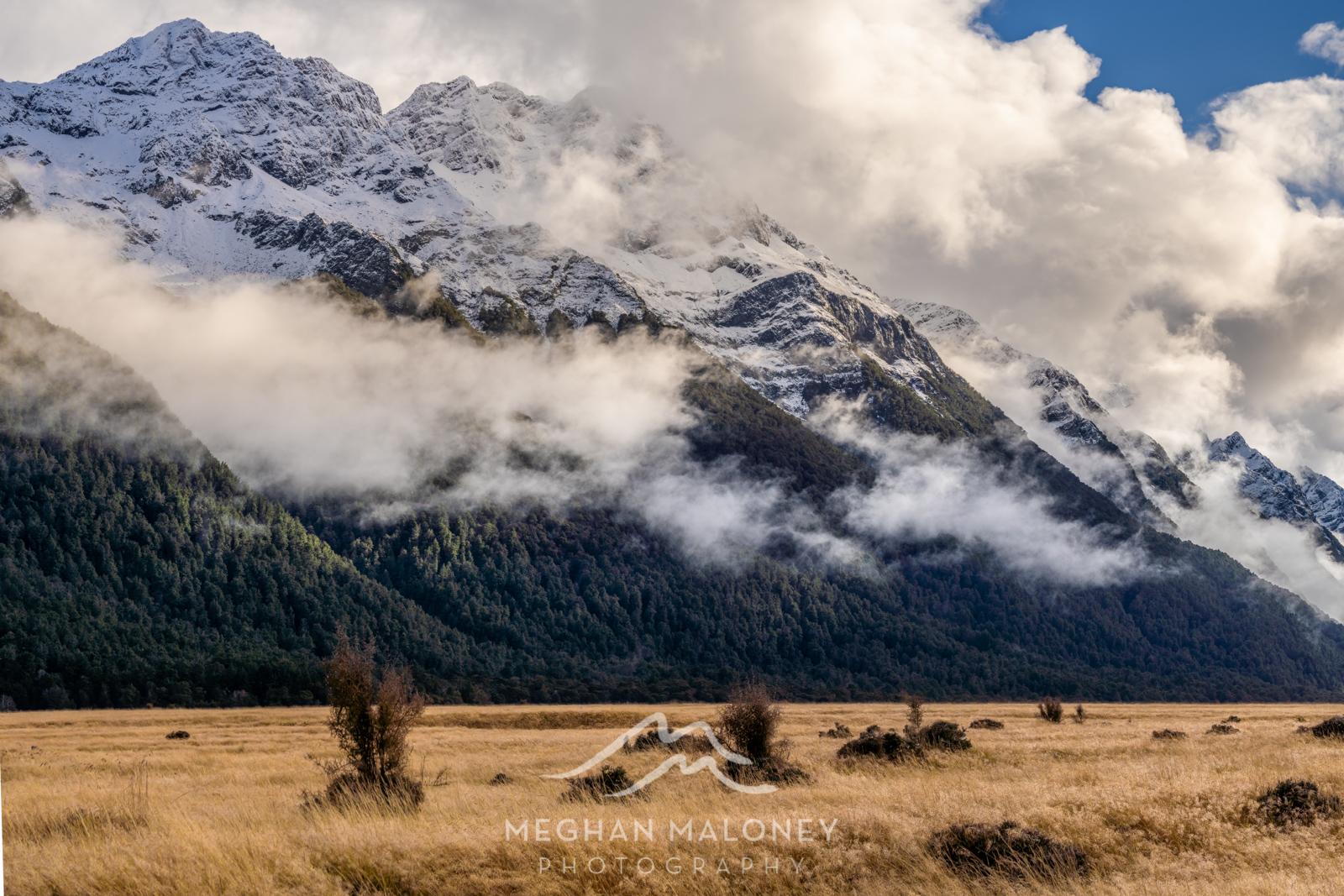 eglinton valley fiordland