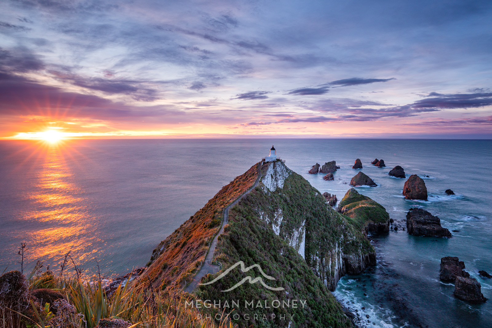 Catlins & Dunedin Landscape Photography