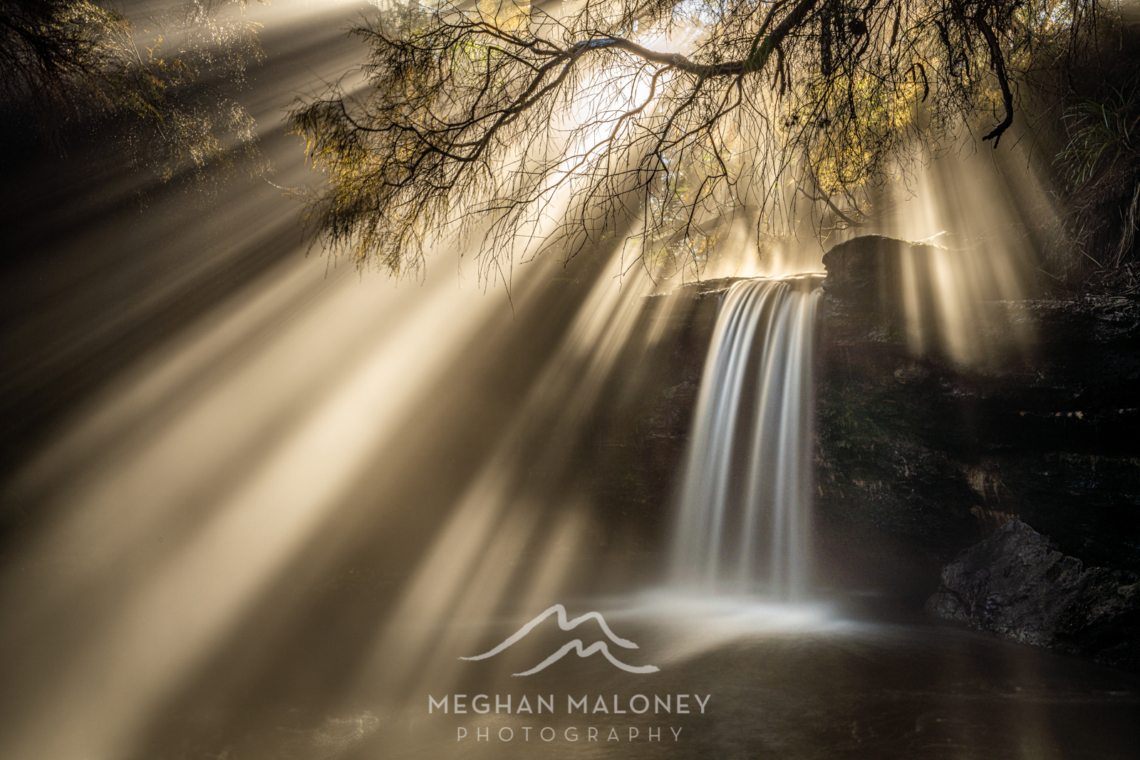 Rotorua & Tauranga Landscape Photography