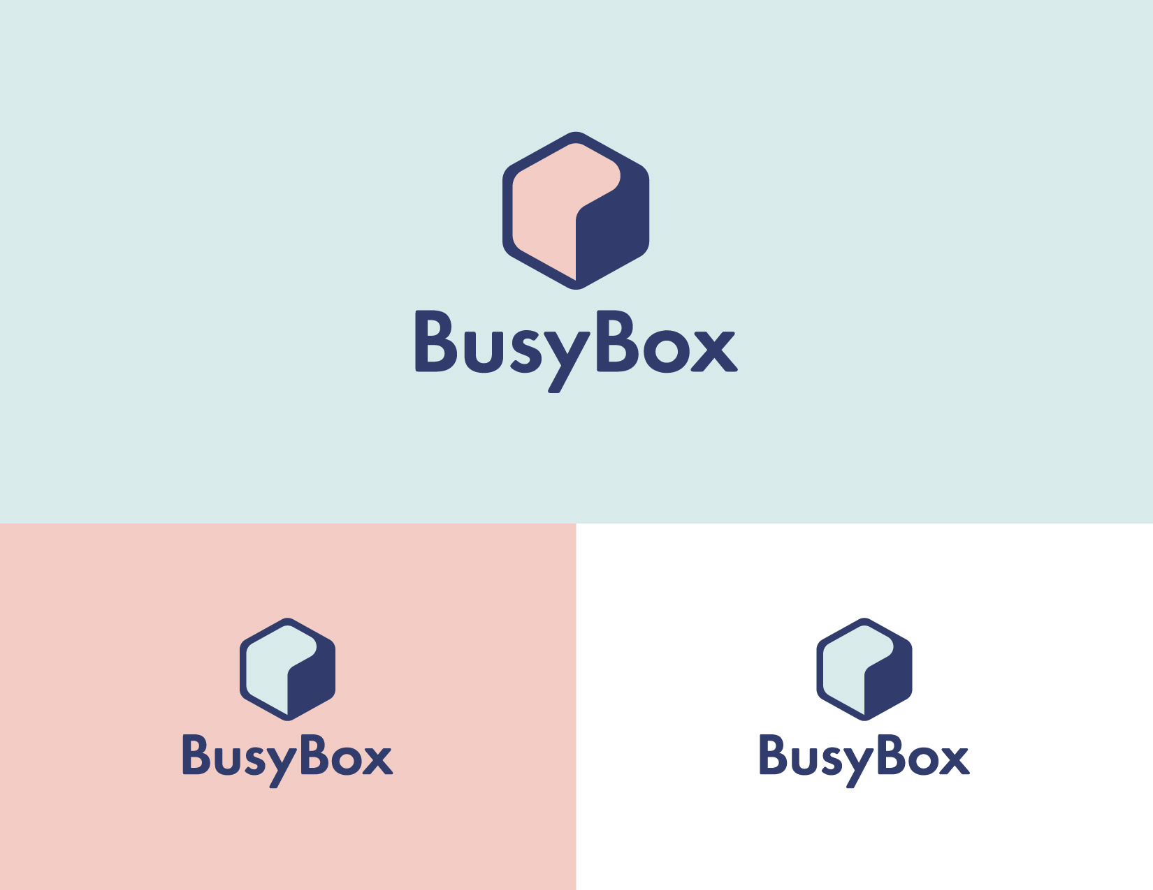 Logo design and branding for a box subscription service startup. James Cannella Marketing, Design, and Artificial Intelligence Consulting Services